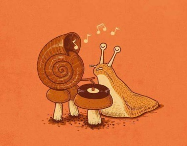 Cargol amant de la musica - 1