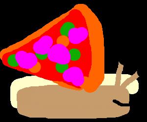 Cargol de pizza