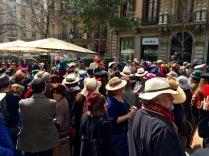 XII Passejada amb barret - 2016 - 51