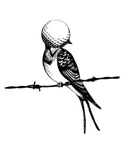 Birdie - Sala Hiroshima - cartell