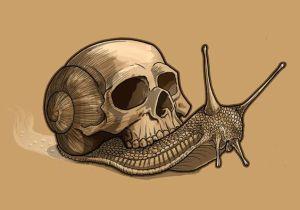 ossos i cargol