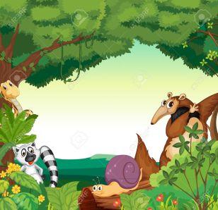 animals-de-la-selva-i-cargol-1