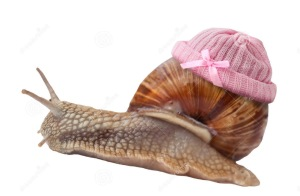 cargol-amb-barret-rosa
