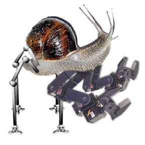 robot-cargol
