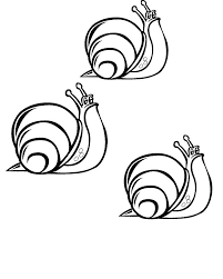 tres-cargols-blancs