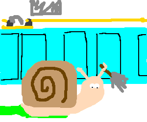 cargol-ama-de-casa