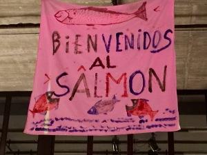 hablar-con-las-plantas-parallegar-a-un-pisaje-salmon-mercat-de-les-flors-voltar-i-voltar-1