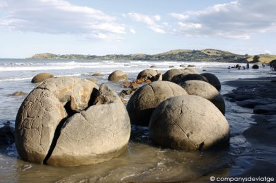 las_curiosas_moeraki_boulders__isla_sur_