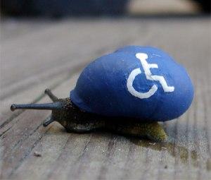 cargol-discapacitat