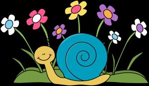 cargol-i-flors