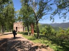Sismògraf Olot 2017 - Montsacopa - Voltar i Voltar - 1
