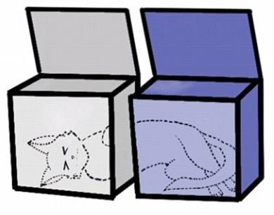 Gat de Schrödinger - 1