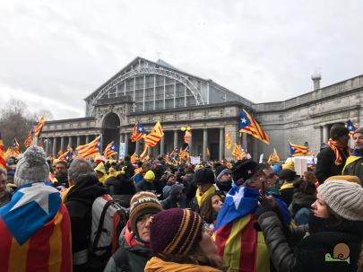 anifestació a Brussel.les - 07.12.2017 - - 9
